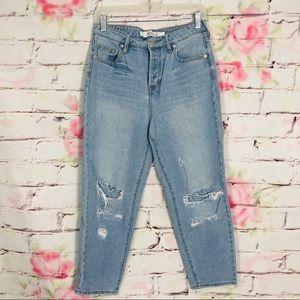 Brandy Melville light wash ripped girlfriend jeans